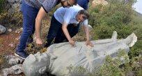 Antalya'da çalılık alanda Atatürk heykeli bulundu